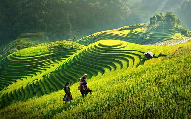 Tú lệ tháng 10, mùa cốm trên núi ngàn : Tháng 10 hàng năm, khi sắc vàng của thu phủ lên những bông lúa còn ngậm sữa, khi những thửa ruộng...